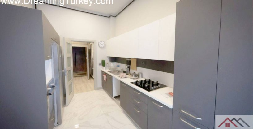 Classic Complex with a Lake View in Istanbul 1+1